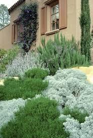 Kitchen Gardens Design Best 25 Mediterranean Garden Design Ideas On Pinterest