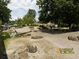 Ottoman Zoo Bern Zoo Tierpark Dählhölzli About Zoos