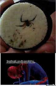 I Saw A Spider Meme - saw spider oreo and thought of this by anneli eriksson 58 meme center