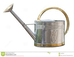 antique watering can with clipping path royalty free stock photo