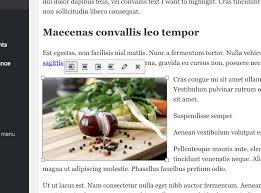 Neque Adipiscing An Cursus by How To Add Captions To Images In Wordpress Compete Themes