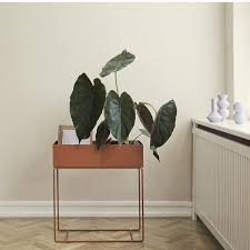 Hanging Planter Boxes by 149 Best Plants Freestanding U0026 Hanging Planters Plant Stands