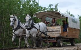 Alaska how to travel back in time images This covered wagon tour in alaska will transport you back in time jpg