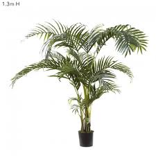 kentia palm tree 1 3m home decor interiors online