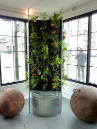aquaponic vertical vegetable garden vertical vegetable gardens