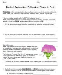guesthollow com homeschool curriculum printables u0026 resources