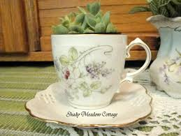 diy spring teacup planter shady meadow cottage
