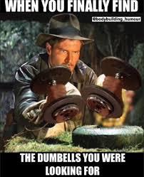 Gym Humor Memes - 301 best gym humor images on pinterest workout humor funny