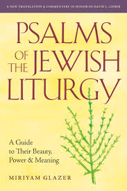 psalms of the jewish liturgy a guide to their beauty power