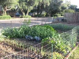 vegetable garden fence ideas this is a beautiful front yard garden interesting article on