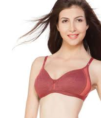 Nagina International Buy Nagina Orange Cotton Bra Online At Best Prices In India Snapdeal