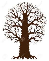 silhouette of oak tree with no leaves on white background royalty