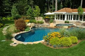 alluring swimming pool design with natural influence showcase