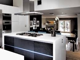Are Ikea Kitchen Cabinets Good Outstanding Pictures Of Kitchens With Ikea Cabinets My Home
