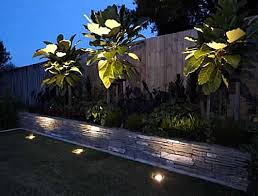 Outdoor Up Lighting For Trees Design Outdoor Uplights Exquisite Led Uplighting For Trees