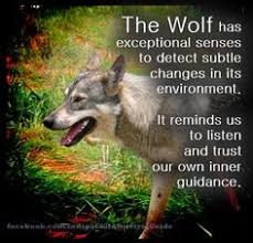 spirit animals and their meanings wolf spirit a power