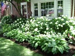 Landscaping Ideas For Front Yard by Best 25 Front Yard Gardens Ideas On Pinterest Front Yard Tree
