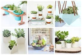 diy succulent 17 easy diy indoor succulent planter ideas to beautify your home