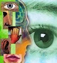 significado de imagenes sensoriales wikipedia no tan resumido imágenes visuales auditivas táctiles olfativas