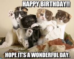 Happy Kitten Meme - happy birthday kittens in position meme on memegen