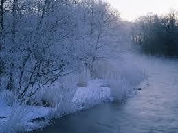 winter nature scene branches snow desktop backgrounds national