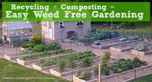 gardening picture organic gardening