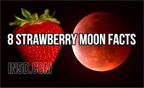 what is a strawberry moon 8 strawberry moon facts in5d esoteric metaphysical and spiritual