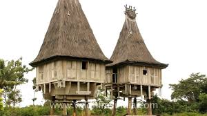 Beach Houses On Stilts by East Timor House On Stilts Youtube