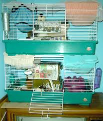 Best Bedding For Rats Rat Houses U0026 Cages