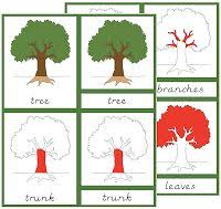 montessori tree printable 209 best montessori nature flora plants gardening images on