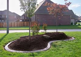 landscape borders around trees how to create nice landscape