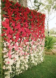 wedding backdrop flower wall flower wall nov 11 2018 shared flower p