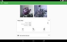 flowerchecker plant identify android apps on google play