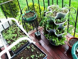 vegetable garden design plans canada gardening for beginners the