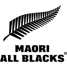 all black lions maori all v lions