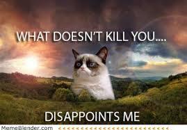 Grumpy Cat Meme - top 10 grumpy cat memes