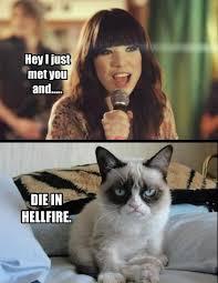 Funny Grumpy Cat Meme - 12 funny grumpy cat meme