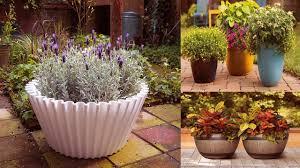 Outdoor Container Gardening Ideas Unique Container Gardening Ideas Large Outdoor Planters