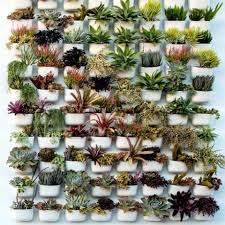 living wall planters living wall planter living walls and planters