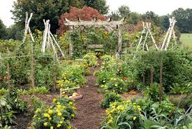 vegetable garden ideas u2013 home design and decorating