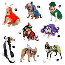 underdog halloween costume halloween hounds 22 adorable dog costumes for 2014 dog milk