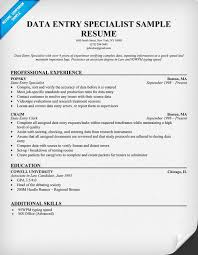 Employment Specialist Resume Data Entry Resume Data Entry Coordinator Resume Sample