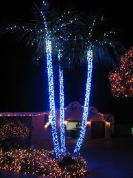 best led lights for outdoor trees 349 best beautiful christmas light images on pinterest holiday