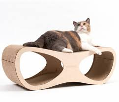 modern scratching post modern design cat scratching post best way to clean cat from