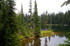wood lake via sawtooth mountain hike hiking in portland oregon