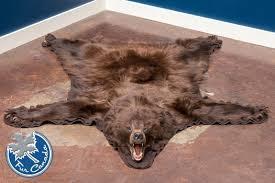 Polar Bear Fur Rug Black Bear Skin Rugs Furcanada