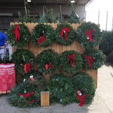 where to get a good christmas tree my winter haven fl