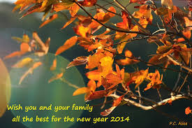 panoramio photo of wish you and your family all the best for the