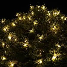 plymouth christmas tree lighting visit marshall county