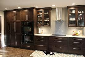 black kitchen cabinets flooring 75 beautiful vinyl floor kitchen with wood cabinets